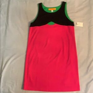 Cynthia Steffe Knit Dress, Fully Lined